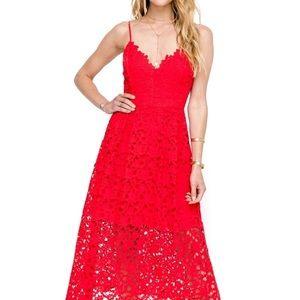 Brand new playful and elegant midi dress